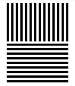 Тест с линиями
