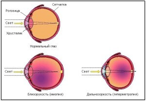 Схематичное изображение сетчатки глаза и преломления света