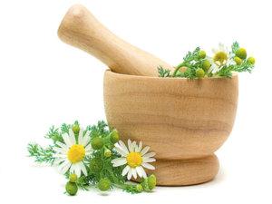 Лекарственные травы при конъюнктивите