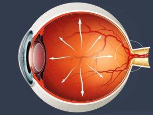 Глазное давление и офтальмогипертензия